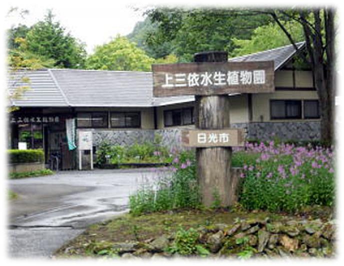「上三依水性植物園」観光