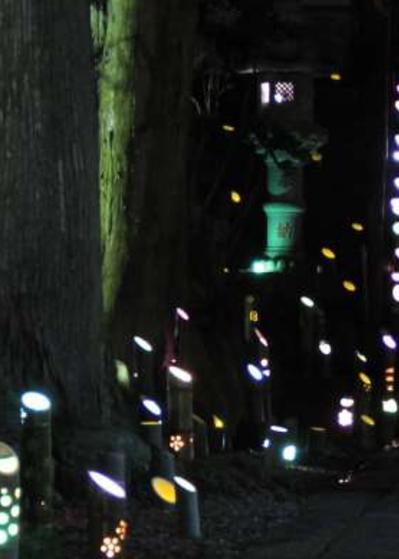 竹灯籠の神秘的な光につつまれるイベント「竹取物語」へ
