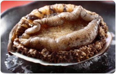 アワビの陶板焼き(個人盛り)