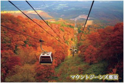 那須山麓のもみじ名所巡り無料ツアー